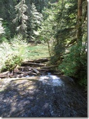 lewis river falls 20