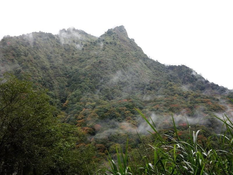 2013_1126-1129 鹿林山-1_169