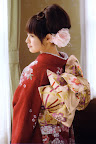 瀧本美織の壁紙プレビュー
