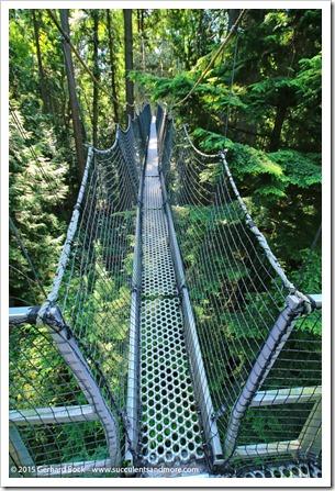 150630_Vancouver_UBCBG_0031