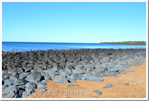 Mon Repos Turtle Centre | How Many More Minutes?