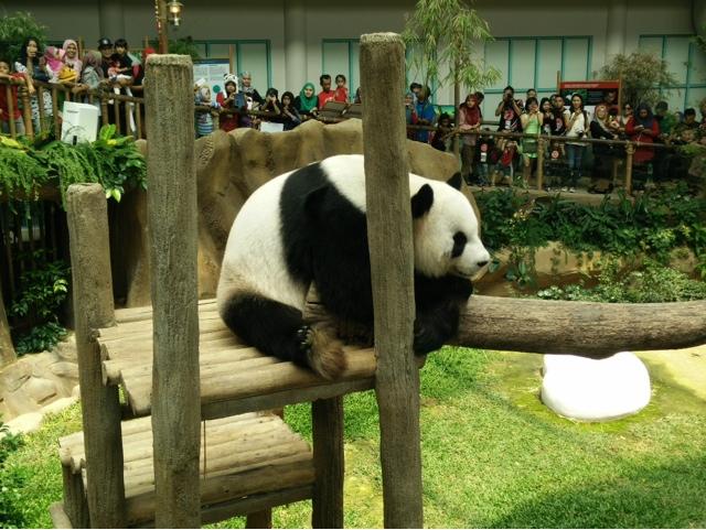 KBBA Bloggers Day Zoo Negara Malaysia