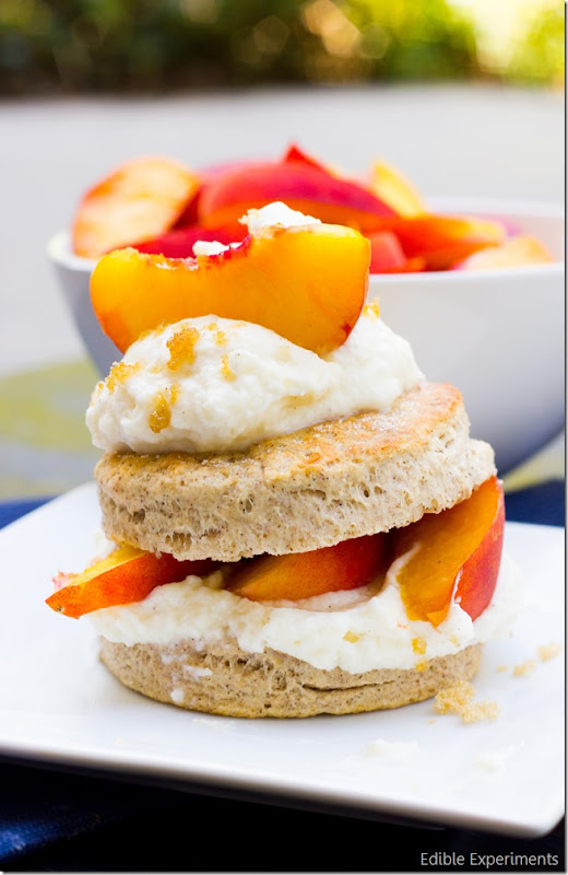 Brown Sugar and Cinnamon Peach Short Cakes with Cinnamon Mascarpone Whipped Cream (1 of 1)