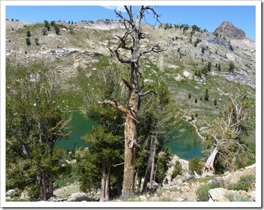Humbolt N.F NV lakes hike-Lamoille Lake