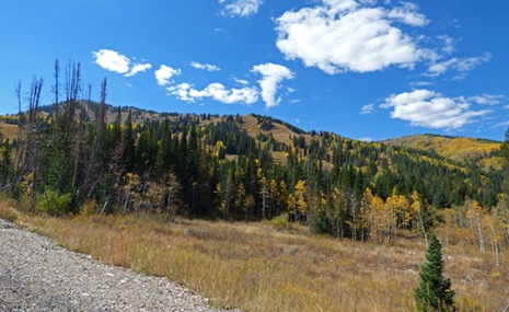 Big Cottonwood Canyon - Autumn