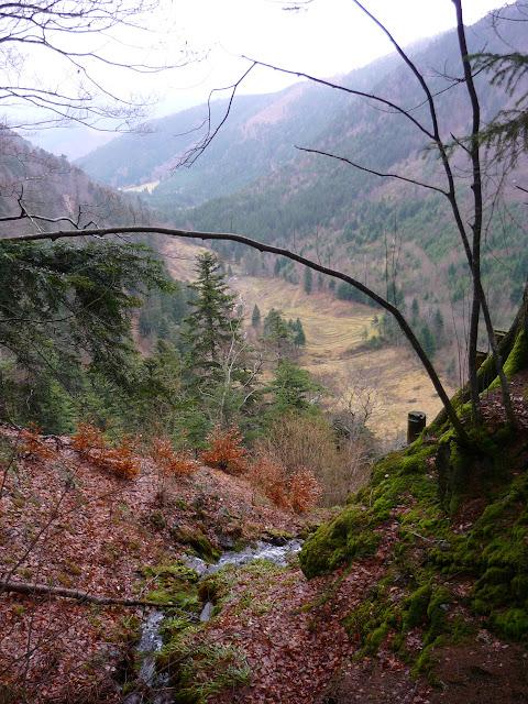 Au sommet de la cascade, dans le montée à Gazon Vert/At the top of the waterfall in the climb to Green Grass