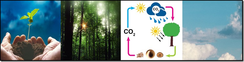 CO2_Graphic