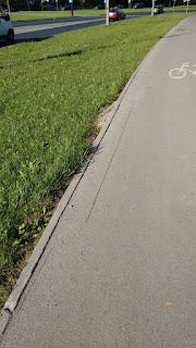 Zapadnięcie wzdłuż krawędzi (strona wschodnia). Zapadnięty asfalt jest już wycięty i czeka na naprawę.  Zdaniem wykonawcy zapadnięcie spowodowane jest błędami projektowymi - brakiem oporów przy opornikach. Powoduje to, że krawężnik sam zaczyna odchodzić od nawierzchni a nawierzchnia w tym miejscu się zapada. Zgodnie ze Standardami Rowerowymi obramowanie drogi dla rowerów powinno być wykonane krawężnikiem na płask. Pozwoliłoby to uniknąć takich wad.