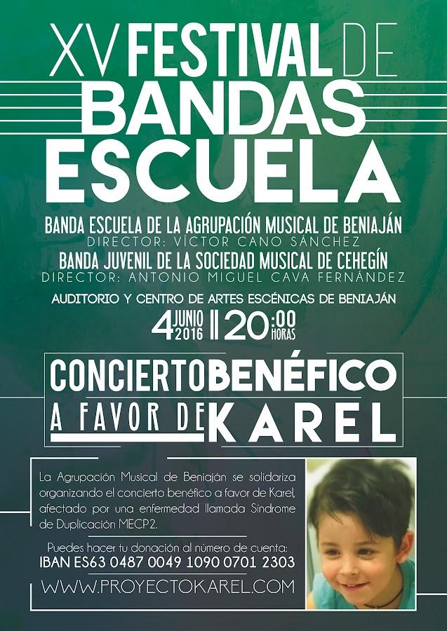 Cartel XV Festival Bandas Escuela