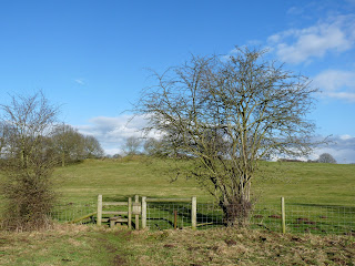 Stile on way to Calwich Abbey Estate
