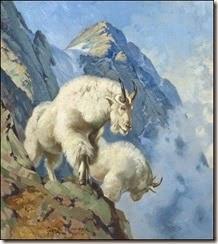 113419_34296_Goats_1
