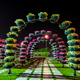 Flower Arc by Braggart Reigh - City,  Street & Park  City Parks ( city parks, park, amusement, gardens, night, flower parks, flowers )