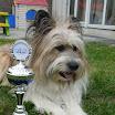 Alissa Pokal 2.JPG