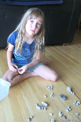 Sorting-Fossils