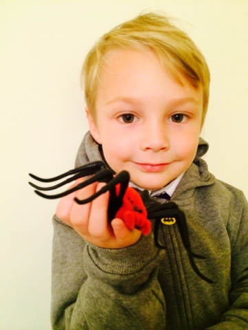 Wild Pets Spider Review - Blake Clement
