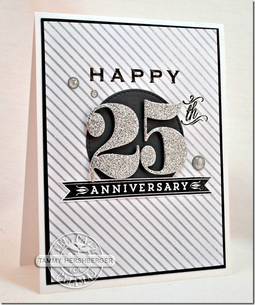 Our 25th Anniversary by Tammy Hershberger