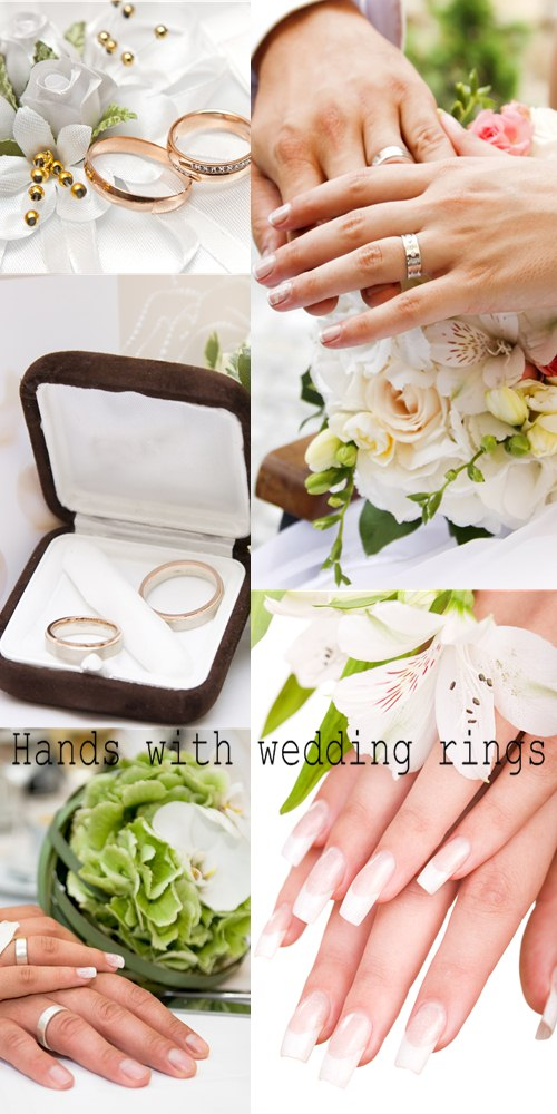 Download Stock Photo: Hands with wedding rings