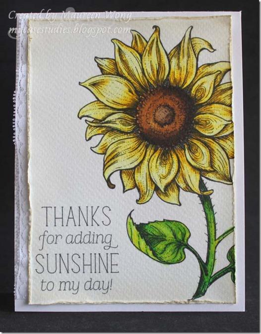 SunflowerPower2