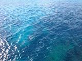 De zee.