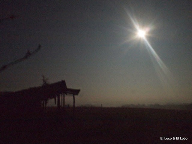 Last Gersois moon