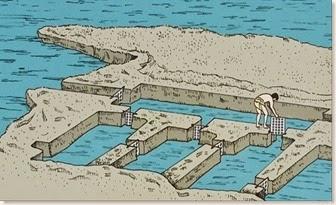 Illeta dels Banyets - Piscifactoria romana