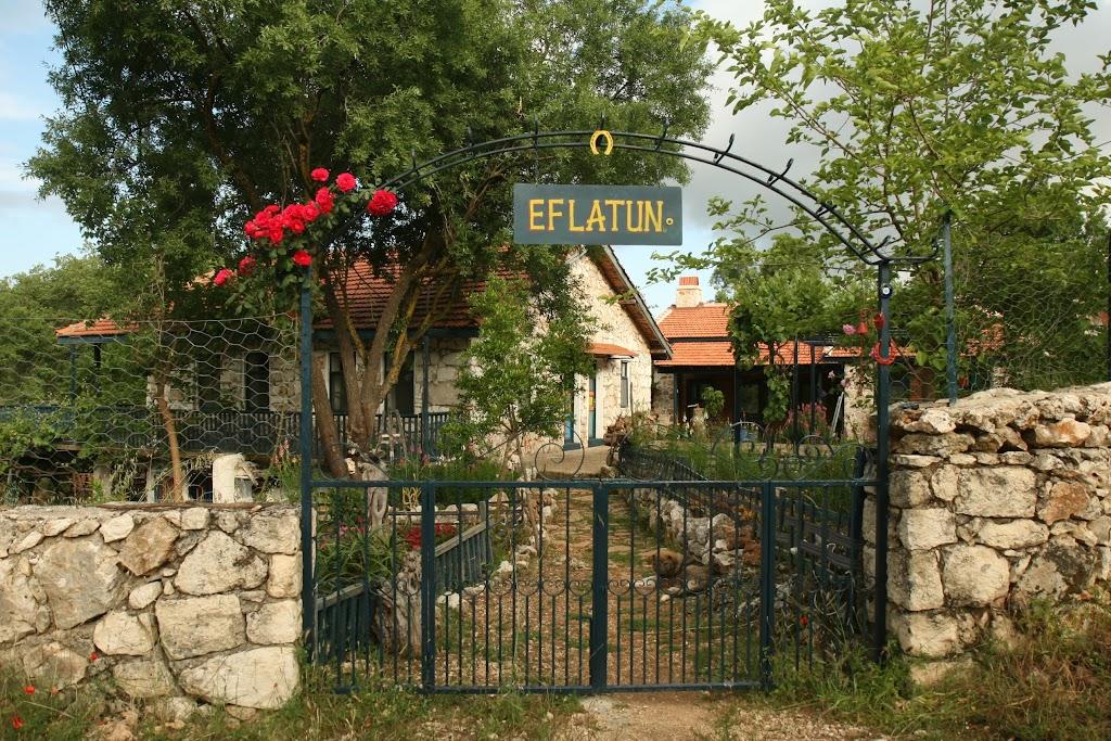 Eflatun-bahçe 011