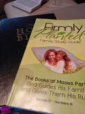Firmly Planted Bible Study