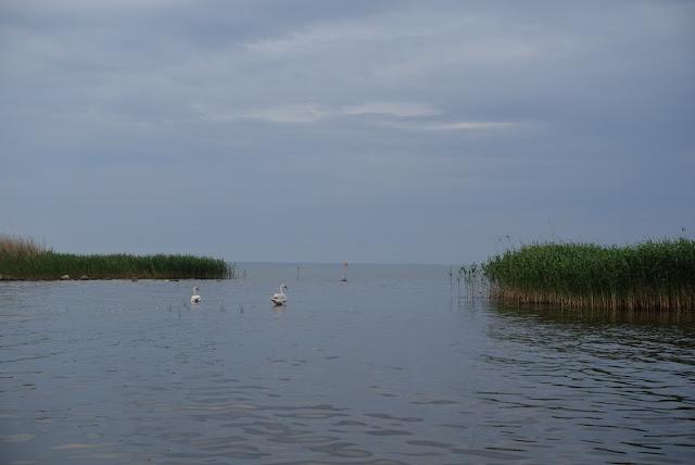 Peipsijärvi , ©www.ruuhkavuodet.net