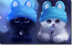 gatos divertidos buscoimagenes (12)