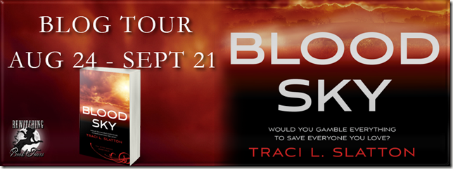 Blood Sky Banner 851 x 315