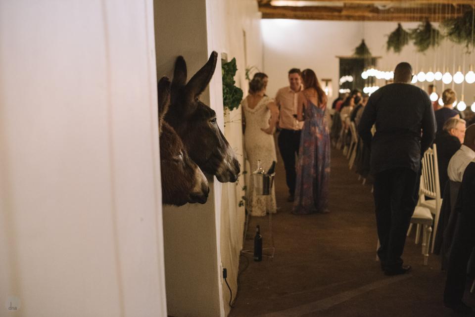 Hannah and Pule wedding Babylonstoren Franschhoek South Africa shot by dna photographers 1277.jpg
