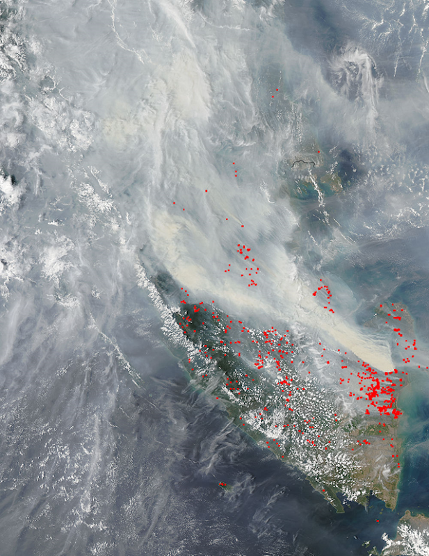 Smoke and forest fires in southern Sumatra, 20 October 2015. Photo: LANCE MODIS Rapid Response