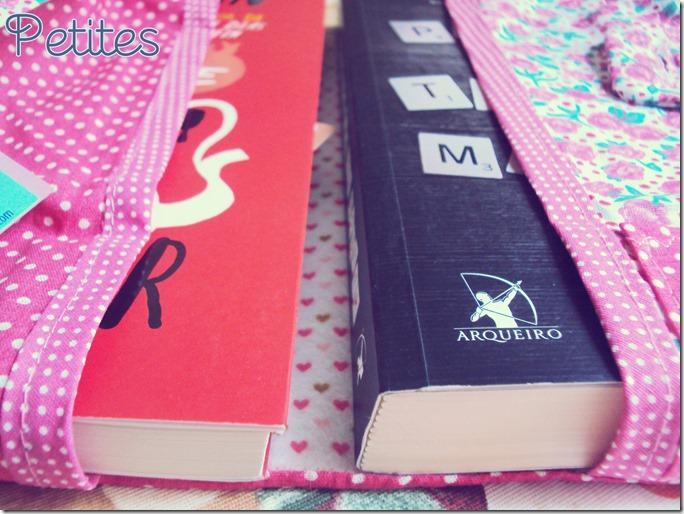 capa para dois livros 04