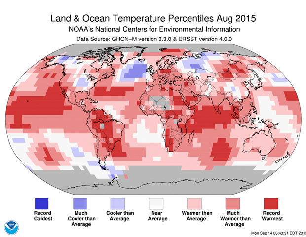 August 2015 blended land and sea surface temperature percentiles. Graphic: NOAA