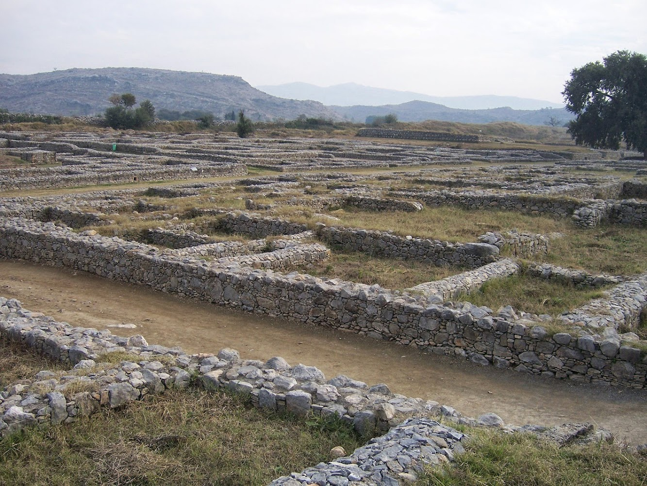 Ruins of ancient Sirkap left 'unprotected'