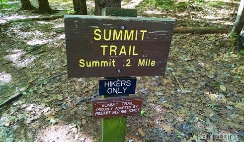 3. Bradbury Mt. Summit trail sign 6-14-15