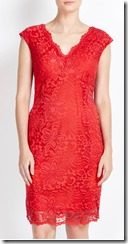 Wallis burnt orange v neck lace dress