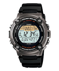 Casio Standard : MTP-VS02G