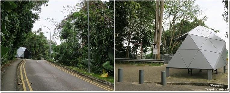 新加坡花柏山 (109)
