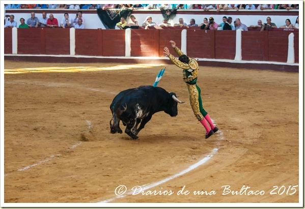 Toros Feria 2015-9858