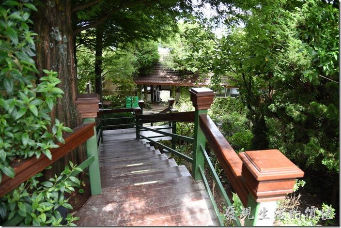 南投清境-珂之幄山莊。主建築物旁有一條小徑可以走到下面的餐廳,這裡樹木扶疏,冬天的時候還有大片的楓紅,老婆當初就是被這景色給吸引,才會決定這次要住這裡。