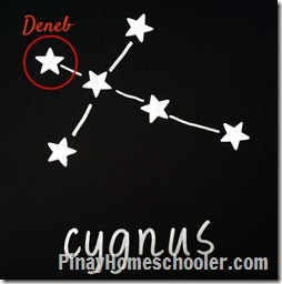 CygnusD_thumb5