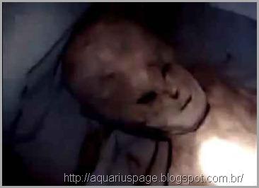 alienígena-dos-andes
