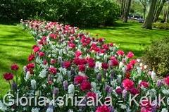 1 .Glória Ishizaka - Keukenhof 2015 - 100