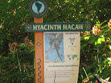 The Macaw sign at the Nashville Zoo 09032011
