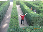 Getting lost in the Labyrinth