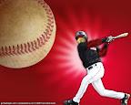 bird-baseball.jpg