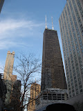 Downtown Chicago 01142012c