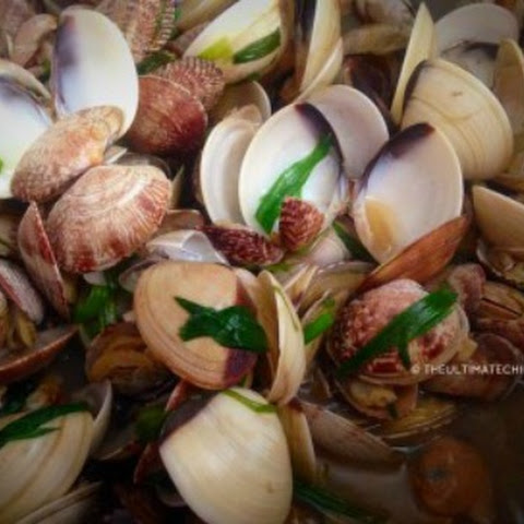 Clams in Green Onions