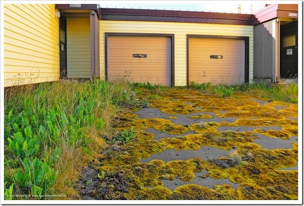 150910_Adak_driveway_WM